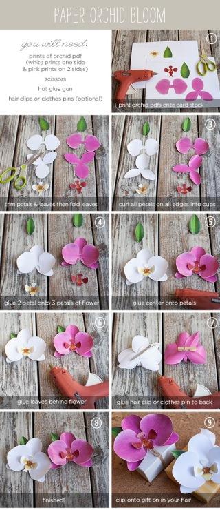 Объёмные цветы из бумаги на стену пошаговая инструкция фото