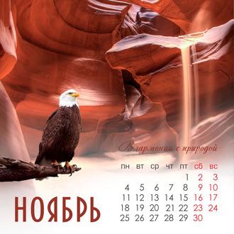 Создатель фотоизделий Ирина Косулина - Волгоград